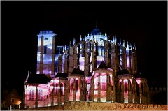 Cathdrale Saint-Julien au Mans (remi.gilein) Tags: france illumination cathdrale mans nuit lemans vieux sarthe 2015 saintjulien paysdeloire chimere