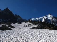 Grand_Parcours_Alpinisme_Chamonix-Edition_2014_ (36)