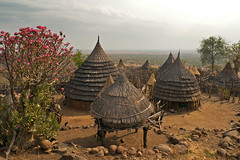 Tennet Village (Daniel P Froese) Tags: africa sudan village bush tree skyline landscape flower photo photos image images picture pictures dry hot huts