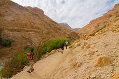 Walking the country (EagleXDV) Tags: travel trees sky people plants mountains travelling nature clouds creek river landscape israel sand rocks stream desert hiking stones dry ground hills vegetation bushes deadsea wadi eingedi topography arugot