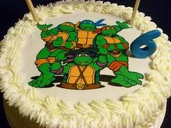 Tarta Tortuga Ninja (Rosana's Biscuits) Tags: cake turtle ninja tortuga tarta