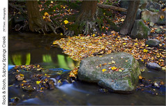 Rock & Roots, Sulphur Springs Creek (jwvraets) Tags: autumn fall leaves creek forest nikon stream gimp niagara rapids ravine stcatharines opensource effingham niagaraescarpment fallcolour shorthillsprovincialpark d7100 rawtherapee nikkor18105mmvr sulphurspringscreek