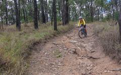 Steep Descent (Neil Ennis) Tags: cycling mtb blacksnake bnt