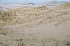 (Pheral Lamb) Tags: film beach newjersey sand december fuji doubleexposure dunes multipleexposure jerseyshore expiredfilm 28105 islandbeach nikonf4 reala100