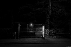 A lonely place to wait... (aljones27) Tags: trees cambridge blackandwhite bw cold bus tree monochrome night dark evening waiting alone darkness empty busstop spooky nighttime stop wait late lonely cambridgeshire afterdark lonesome