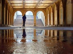 New York City, USA - Bethesda Terrace, Central Park (johnnysenough) Tags: 87 newyorkcity nyc ny centralpark passageunderbethesdaterrace usa unitedstatesofamerica 100citiesx1trip lowperspective reflections travel snv34943