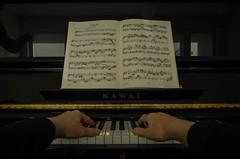 Fuga XII (frankmh) Tags: music piano fugue fuga bach hand musician classicalmusic hittarp skåne sweden indoor