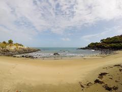 398 - Sur la plage de Bluff