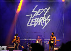 Sexy Zebras (luciérnaga ámbarina) Tags: feria de muestras valladolid sexy zebras iván ferreiro maga 2016