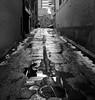 Moody Alley (Szoki Adams) Tags: montreal winter reflections alley snow wet crackedpavement moody blackandwhite bw blackwhitephotos monochrome canon canong15 desolate empty shortcut church