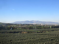 Agriculture and mountain view, from railway between Meknes and Fez, Morocco (Paul McClure DC) Tags: morocco fez almaghrib dec2016 scenery fèsmeknèsregion