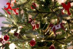 Merry Christmas (andrea.prave) Tags: christmastree alberodinatale árboldenavidad arbredenoël tannenbaum クリスマスツリー рождественскаяелка شجرةالميلاد 圣诞树 merrychristmas buonnatale joyeuxnoël froheweihnachten メリークリスマス срождеством عيدميلادمجيد 圣诞节快乐 christmas natale navidad noël weihnachten クリスマス рождество عيد الميلاد 圣诞 feliz