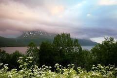 IMG_1684__2_ (Tim Tyson) Tags: favorite landscape midnightsun norway sspdirector tromsø ttus