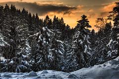 Sonnenuntergang Pfänder Alm Bregenz  Österreich (Klaus Ficker thanks for + 2.000.000 views.) Tags: austria österreich pfänder alm sonnenuntergang sunset mountain snow evening sun clouds kentuckyphotography klausficker canon eos5dmarkiv