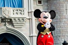 DSC_0030_WS (SureAsLiz) Tags: disney disneyworld waltdisneyworld wdw magickingdom magickingdomwelcomeshow letthemagicbegin mickeymouse mickey cinderella castle