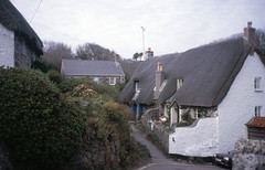 img853 (foundin_a_attic) Tags: 1984 st michaels mount mullion ctcoe cadgwith falmouth rose land cornwall thatched cottage street road garden flowers man bi24tfj uk england