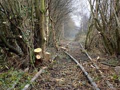 Clearance (Jason_Hood) Tags: disused abandoned railway railroad southstaffordshireline southstaffordshirerailway