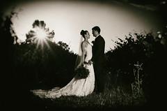 Gorgeous M (Ranford Stealth) Tags: nikond7000 sigma1770f2845 beautiful beauty woman bride wedding perth westernaustralia sunset retro blackwhite bw monochrome mono