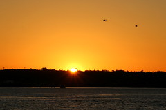 10. Helicopters at sunset (Misty Garrick) Tags: sandiegoca sandiego sunset sandiegosunset