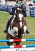 Gatcombe park festival of british eventing 2015 012