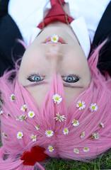 Gänseblümchen (Ben Gun) Tags: pink flowers portrait smile hair 50mm nikon cosplay outdoor f14 hamburg rosa wig gras amu gänseblümchen wallanlagen unschuld hinamori perrücke d7100 shugochara