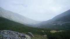 Valea Stanisoarei (Sorin Sfrlogea) Tags: retezat montaniard