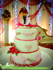 Cake (greengrassjaffna) Tags: lunch buffet dinner function hall green grass grand palace wedding birthday party conference concert auditorium marriage reception engagement mandapam manavarai dj dance floor celebration decoration design get together cake couple