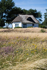 Reetdachhaus (Bea K. I Fotografie) Tags: house haus hiddensee reetdachhaus