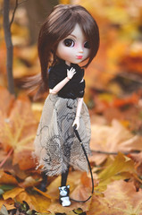 Autumn walk (Dragonella~) Tags: autumn orange leaves yellow nikon doll outdoor coco groove pullip alte obitsu pullipalte d5100 pullipobitsu dragonella