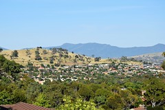Suburban Banks against  the Tidbinbilla  Ranges  in Southern Canberra (AndyBrii) Tags: australia canberra banks conder