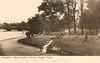 London - Hyde Park (pepandtim) Tags: road park old lake london sussex early postcard sydney nostalgia hyde eastbourne nostalgic collins puss serpentine 1905 grannie efa 22lhp85 11081905