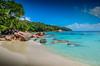 DSC_2566 2 (NICOLAS POUSSIN PHOTOGRAPHIE) Tags: soleil eau sable bleu coco fin vague plage rocher palmier bois seychelle turquoide