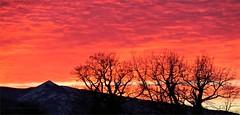 Fuego En El Cielo De Invierno - Fire In The Winter Sky (Konny ;-))) Tags: sunset sonnenuntergang tramonto couchersoleil puestadelsol atardecer pôrdosol
