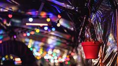 Lumières et un pot (KristHelheim) Tags: lights lumières péniche paris fêtes fête