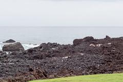 Coastline (denschub) Tags: mozaloha waikoloavillage hawaii unitedstates us