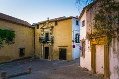 Early morning. No tourists! (Tigra K) Tags: ronda andalucía spain es 2015 architecture balcony door fence lattice plant ruin town vine wall window