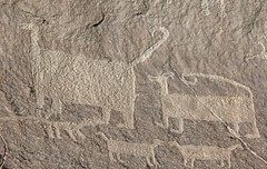 Petroglyphs / Chaco Culture NHP (Ron Wolf) Tags: anasazi anthropology archaeology chacoculturenationalhistoricalpark chacoan nationalpark nativeamerican puebloan panel petroglyph rockart zoomorph newmexico