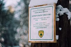 Helios bokeh (reclaimednj) Tags: tuckerton newjersey unitedstates us zenithelios44m458mmf2 bassrivertownship bassriverstateforest nj 2017 forest winter snow