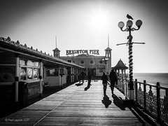 Gull Pole (amipal) Tags: architecture brighton city england gb greatbritain palacepier pier sea shadow sussex uk unitedkingdom urban water people bird silhouette voigtlander 175mm manuallens
