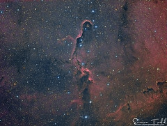 IC1396 - Elephant's Trunk Nebula in LRGB (Simon Todd Astrophotography) Tags: ic1396 elephants trunk nebula maximdl pixinsight skywatcher eq8pro atik 383l ccd qhy5lii qhyccd deepsky deepspace space astrophotography astronomy ukastronomy the sky at night longexposure stacking red green blue luminance astrometrydotnet:id=nova1901525 astrometrydotnet:status=solved