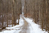 Through the woods (bill.d) Tags: dirtroad allegancounty michigan winter outdoor woods travel road unitedstates rural ruralmichigan