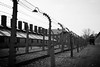 Auschwitz IMG_4601 black and white (Rossi Raslof) Tags: auschwitz kz death dead kill camp konzentrationslager vernichtung gas gaskammern mord holocaust shoa shoah
