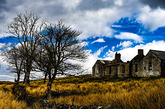 Dereliction of Duty (Brian Travelling) Tags: derelict farm house tree trees scotland inverclyde