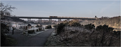 Bedlington Viaduct (Blaydon52C) Tags: bedlington viaduct bridge britishrail railway rail railways trains train transport locomotive locomotives blyth blythandtyne class66 66739 6e45 gbrf gbrailfreight emd gm frost cold winter sun