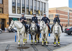 Indianapolis PD Mounted Patrol (will139) Tags: impd indianapolispolice mountedpatrol horses people riders us40 thenationalroad police lawenforcement cops animals