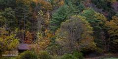 DMH_1225 (DaveHuth) Tags: fall getaway ithaca landscape lori ny parks scenery