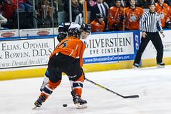 "Missouri Mavericks vs. Wichita Thunder, February 3, 2017, Silverstein Eye Centers Arena, Independence, Missouri.  Photo: John Howe / Howe Creative Photography • <a style=""font-size:0.8em;"" href=""http://www.flickr.com/photos/134016632@N02/32591262561/"" target=""_blank"">View on Flickr</a>"