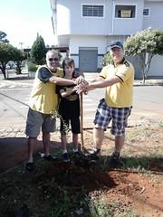 Plantiu de árvores campo do Guarani 11.02.17
