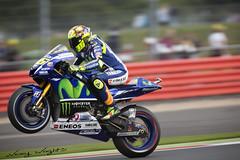 Moto GP - #46 Valentino Rossi (FocusedWright) Tags: uk england bike race track northamptonshire tracks bikes racing vale motorbike silverstone yamaha motogp motorbikes rossi 46 wheelie valentinorossi 2015 vr46