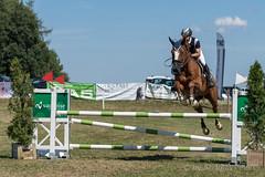 DSC04277_s (AndiP66) Tags: springen dubenmoos solothurn derby 2014 august pferd horse schweiz switzerland kantonsolothurn cantonsolothurn concours wettbewerb horsejumping springreiten pferdespringen samstag saturday 22august2015 2015 cantonofsolothurn contest equestrian sports pferdesport sport sony sonyalpha 77markii 77ii 77m2 a77ii alpha ilca77m2 slta77ii sony70400mm f456 sony70400mmf456gssmii sal70400g2 andreaspeters biberist ch